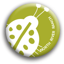 north river ranch lady bug button