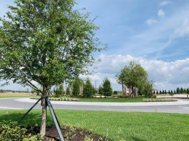 new home land development landscape florida