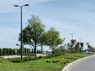 new home land development florida