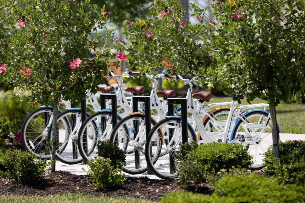 White blue and orange bikes north river ranch