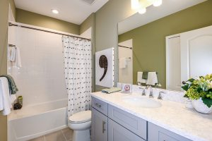 White and grey bathroom with green walls model home north river ranch
