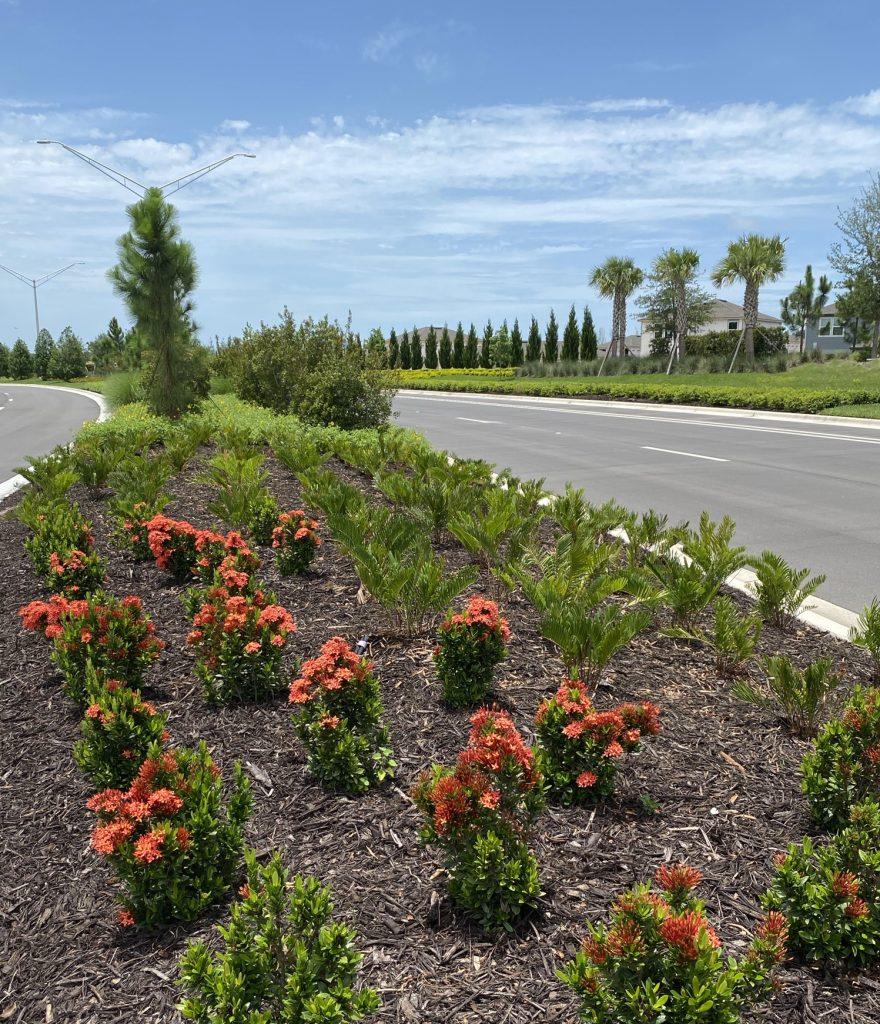 Lush landscaping at north river ranch parrish