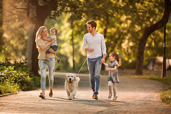 Young family taking their dog for a walk during spring day at the park. - New Home Community - New Construction Homes For Sale in Parrish, FL